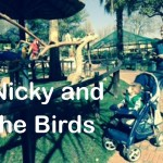 Nicky and the Birds