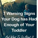 Seven Warning Signs Your Dog has Had Enough of Your Toddler –  And What To Do About It