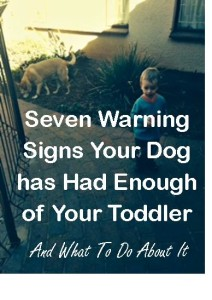 seven-warning-signs-dog-and-toddler-what-to-do