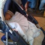 8-weeks-in-stroller