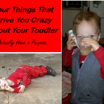 Four Things that Drive You Crazy About Your Toddler Actually Have a Purpose