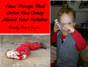 todder-crazy-stuff-has-a-purpose