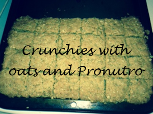 crunchies-with-oats-and-pronutro