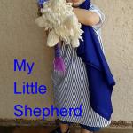 My little shepherd
