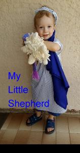 my-little-shepherd