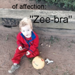 "Our current object of affection: ""Zee-bra"""