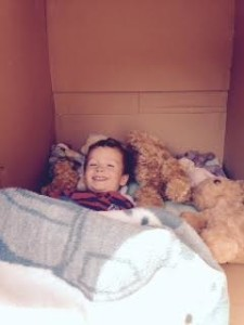 bears-in-box-bed