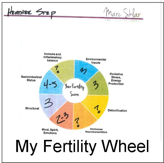my fertility wheel results