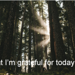 What I'm grateful for today