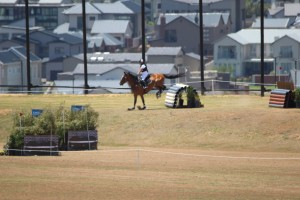 horse-landing
