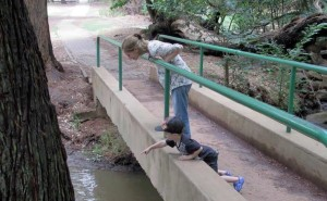 looking-for-pooh-sticks