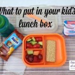 What to Put in Your Kid's Lunch Box